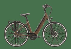 QWIC IMN7+ Belt 2019 Fietscentrum Groningen Walnut Brown Damesfiets